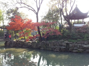 Humble garden garden 3