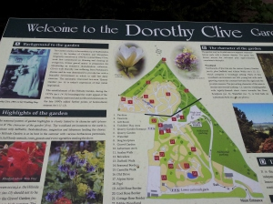 dorothy clive map