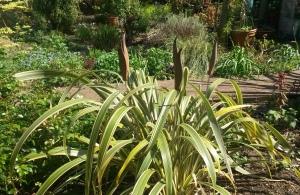 art in garden - May in the garden blooms: