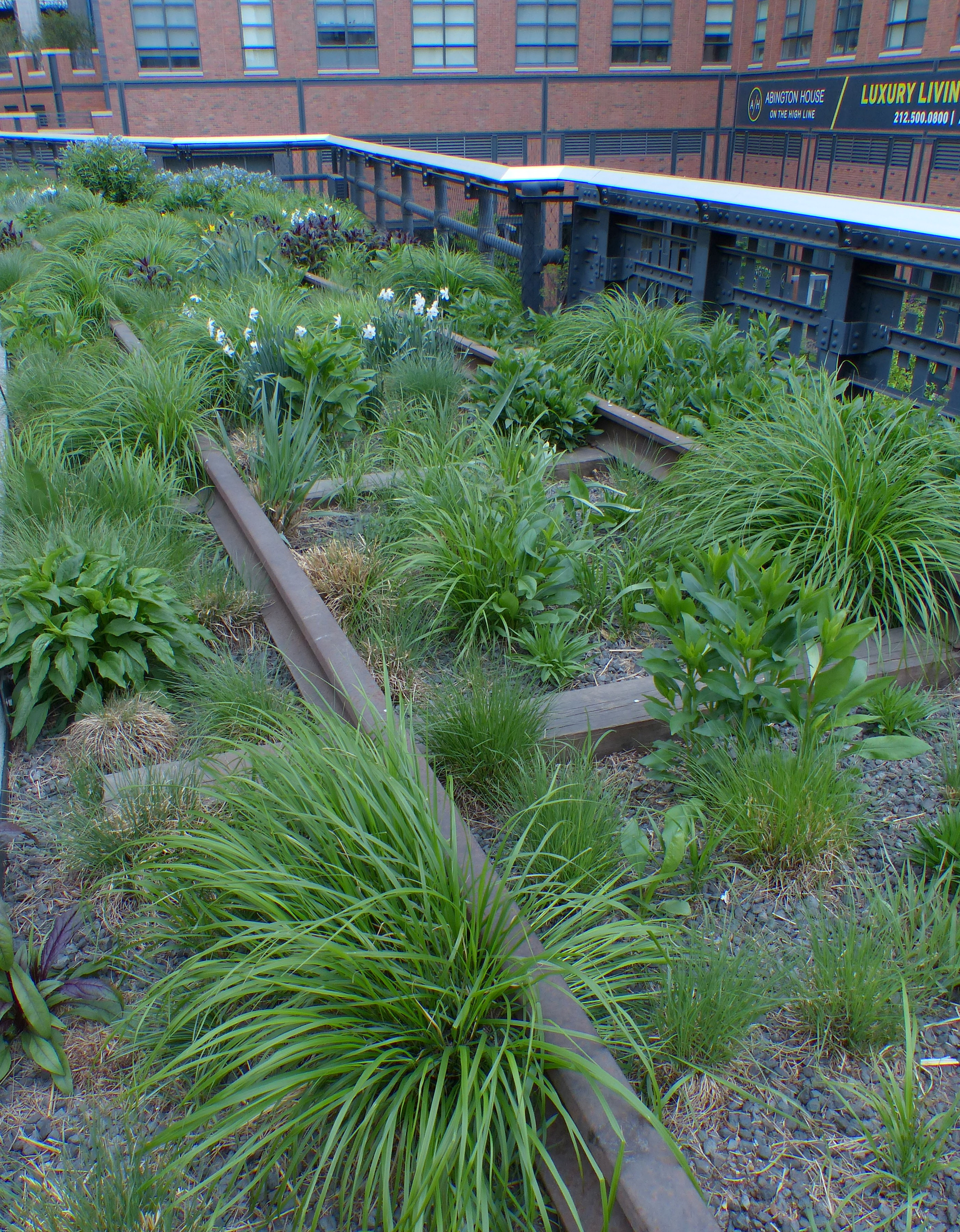 garden design – The Bouncing Tigger Reads on garden designs zone 7, garden designs zone 6, garden designs zone 3,
